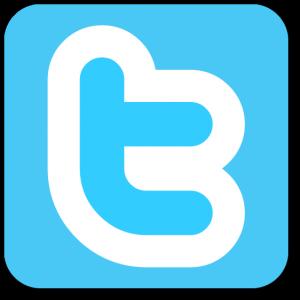 Twitter-Logo-300x300[1]
